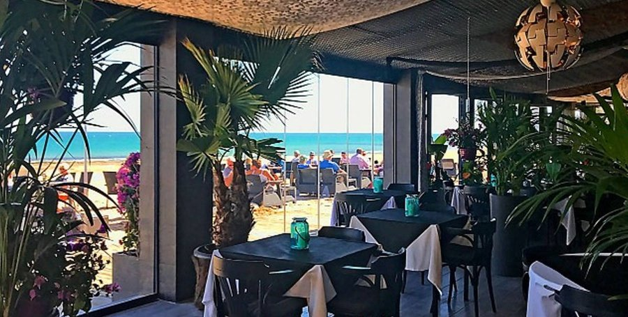 Il bacio bar & beach club Aparthotel Lloyds Beach Club Torrevieja, Alicante
